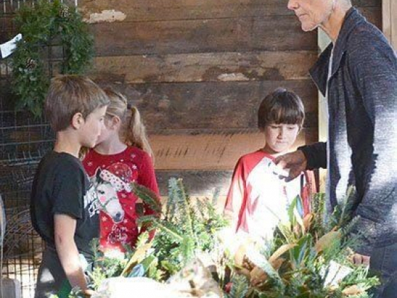 Families Make Memories At Wonderland Tree Farm